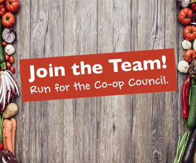 run for the council