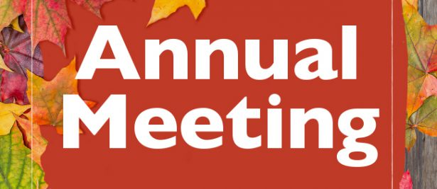 2020 Annual Meeting & Voting