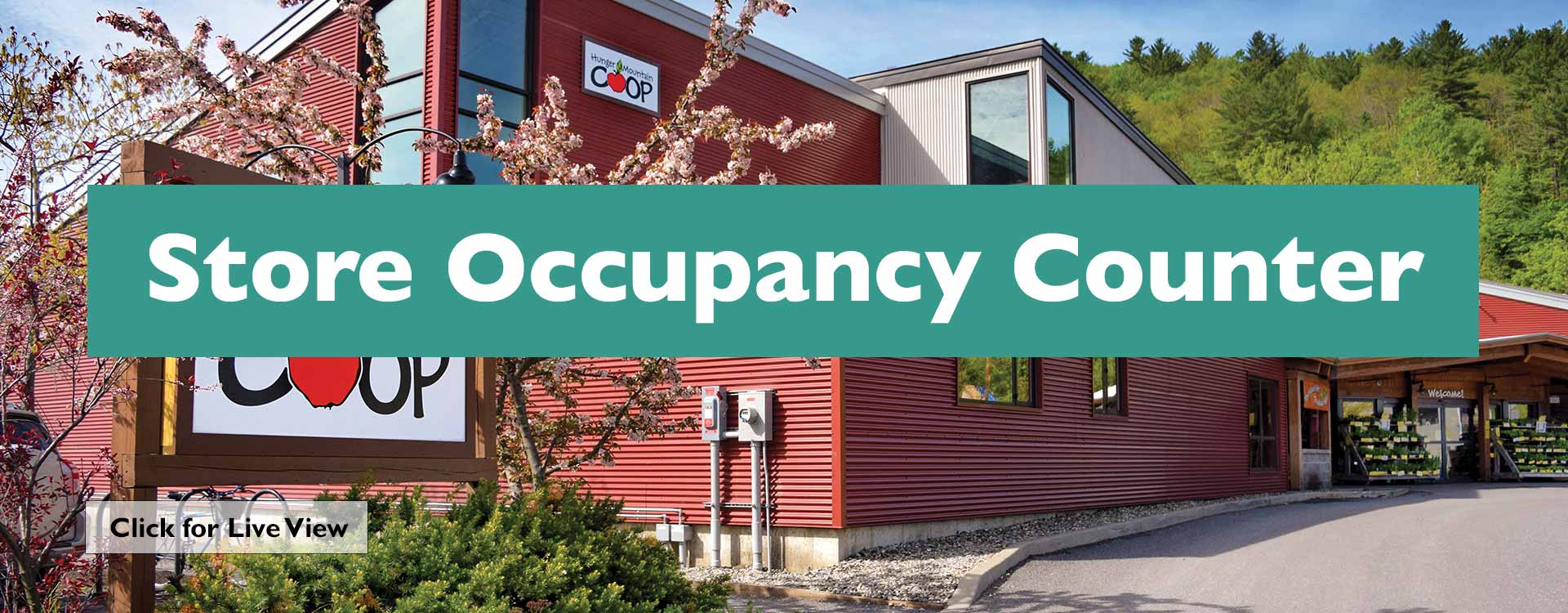 Store Occupancy Spring
